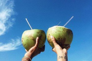 Coconut love